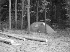 Ein geschützter Zeltplatz erspart viele Schnüre zum Abspannen und darüberfallen :-)